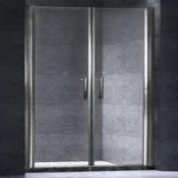 Душевая дверь ODA-100